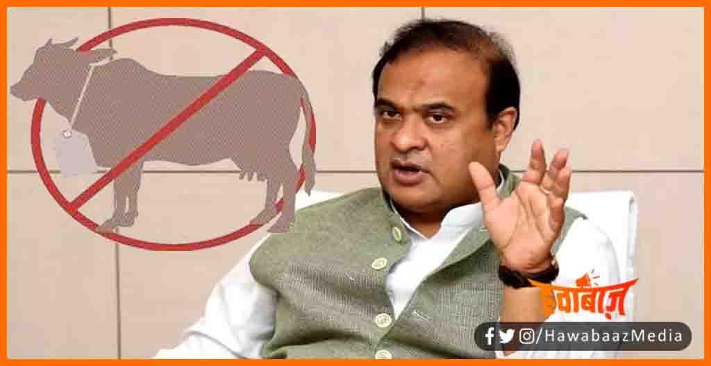 Beef Ban in Asam, Asam me Nahi Bikga Gaumans, Asam news, Bihar news, Himant Biswa ka masterstroke, Mandir ke 5 KM ke Dayre me nahin bikega beef,