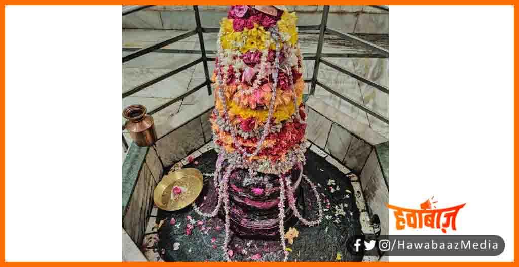 Mini Mateshwar Dham, Mateshwar dham mandir, Mateshwar Mandir, Ek Shivling Roj, Mateshwar dham mahadev, Bihar news, Ek Mahadev Roj, Shivling ki Kahani,